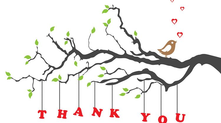 Networking Tip: Say thank you
