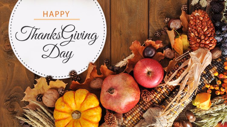 Happy Thanksgiving from BusinessMixers.com!